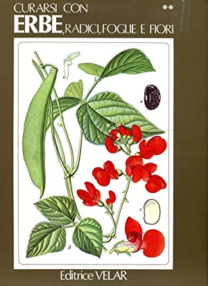 Curarsi con erbe, radici, foglie e fiori.: BORIO Emanuela