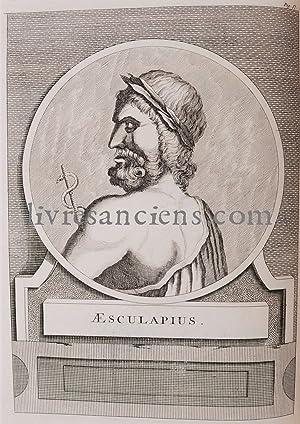 Histoire de la botanique. Du XVIe siècle jusqu'à 1860 - Julius von Sachs