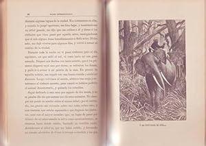 VIAJES EXTRAORDINARIOS. Narraciones amenas para niños ilustr. por N. Méndez Bringas y M. Angel.