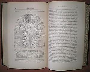 ELEMENTOS DE HISTOLOGIA NORMAL Y DE TECNICA MICROGRAFICA.: RAMON Y CAJAL, Santiago