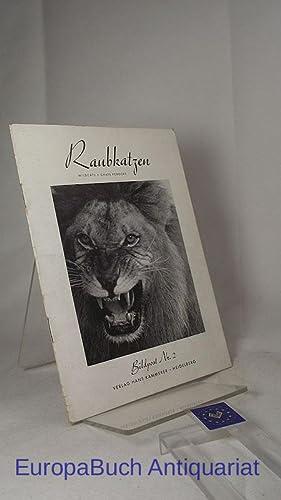 Raubkatzen = Wildcats = Chats féroces. Sämtliche Aufnahmen von Hans Kammerer: Kammerer, Hans: