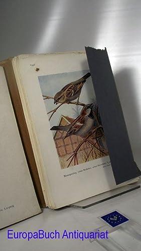 Die Singvögel der Heimat, 86 farbige Tafeln mit systematisch- biologischem Text nebst Abbildungen ...