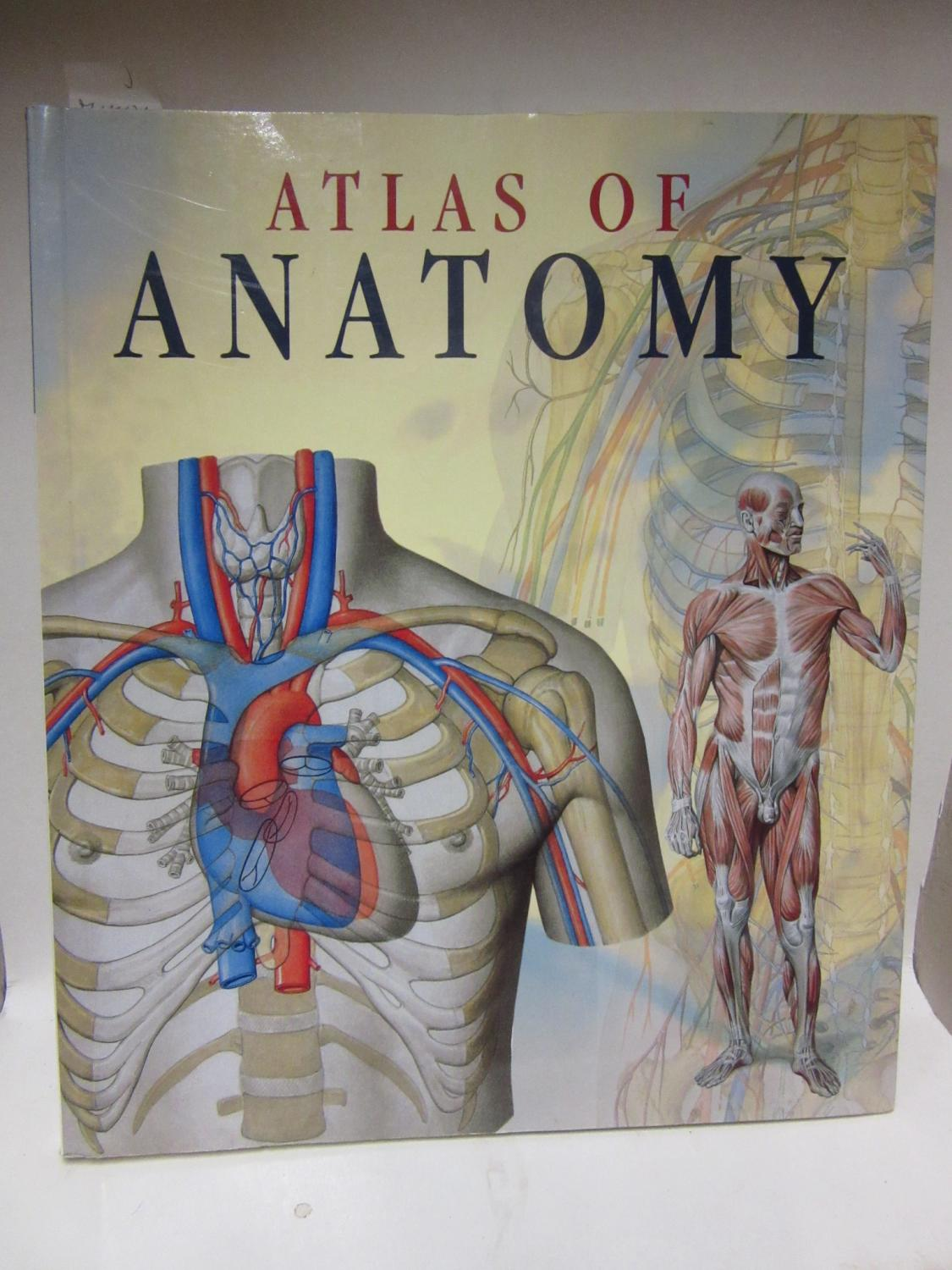 atlas of human anatomy - ZVAB