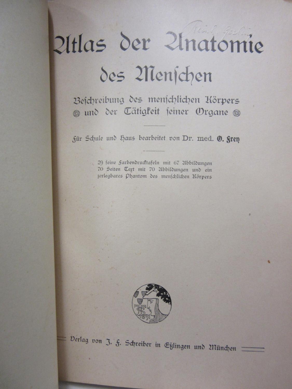 atlas der anatomie organe - ZVAB