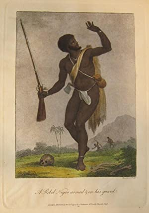Narrative of a Five Years' Expedition Against the Revolted Negroes of Surinam, in Guiana, on ...