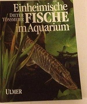 Einheimische fische im aquarium die tier und pflanzenwelt for Einheimische fische gartenteich