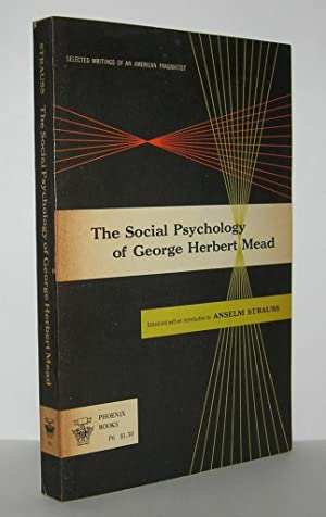 describing social behaviorism from the perspective of george herbert mead This paper addresses george herbert mead's behaviorism on the basis of gary a cook's george from the functionalist perspective of his early social.