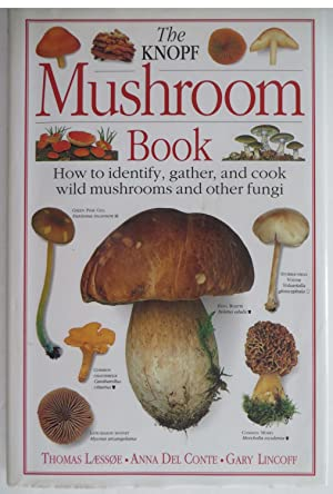 The Knopf Mushroom Book : How to Identify, Gather, and Cook Wild Mushrooms and Other Fungi