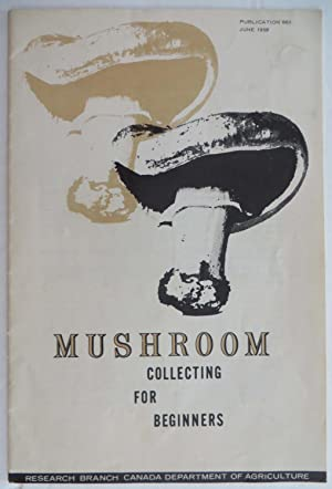 Mushroom Collecting for Beginners