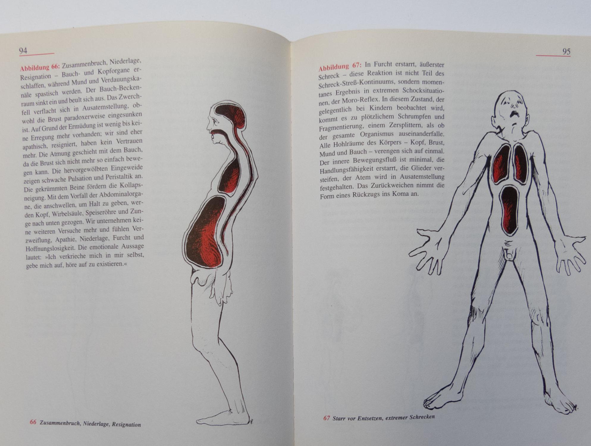 verkörperte gefühle anatomische ursprung von stanley keleman - ZVAB