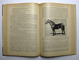 Pferdezucht : (Reihe: Tierzuchtbücherei): Zorn, Wilhelm