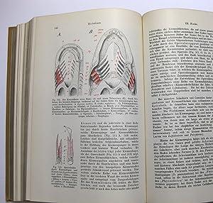 Lehrbuch der Zoologie: Hertwig, Richard