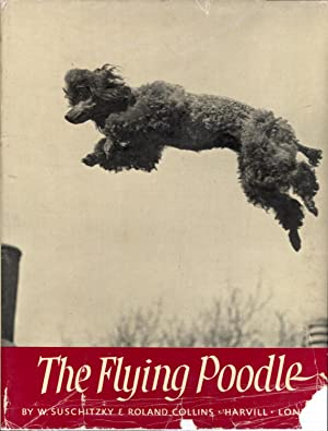 The Flying Poodle
