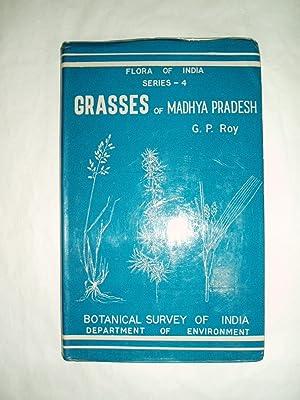 Grasses of Madhya Pradesh: Roy, G.P.