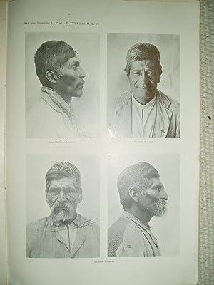 Apuntes sobre antropometría de cuatro naturales del noroeste Argentino: Bruch, Carlos