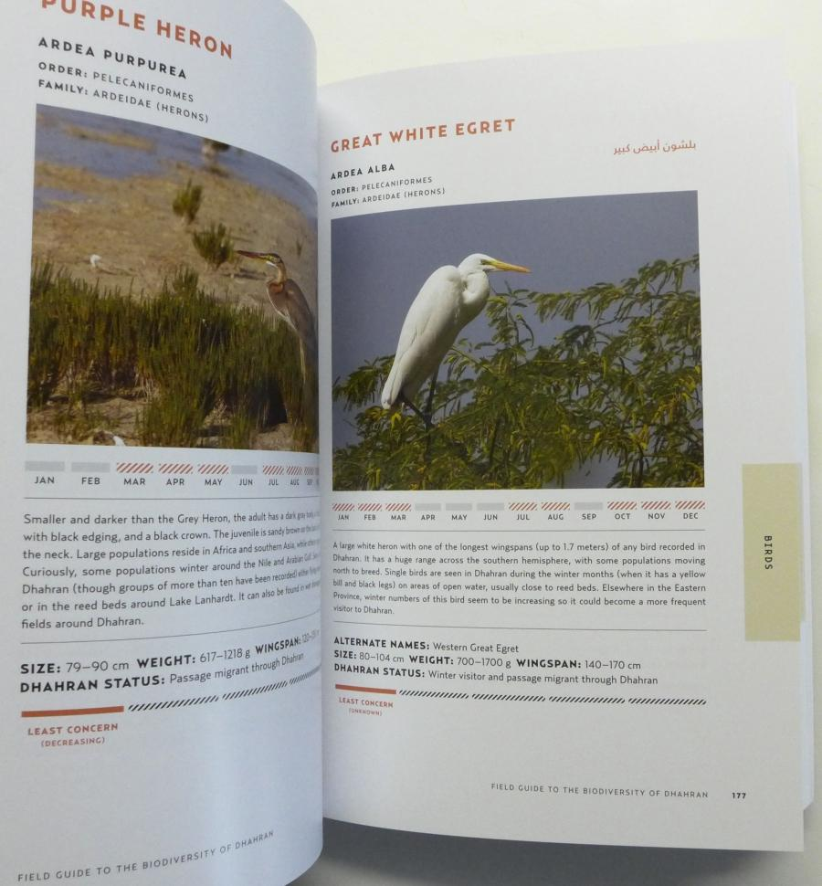 Field Guide to the Biodiversity of Dhahran
