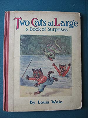 Two Cats at Large : A Book of Surprises