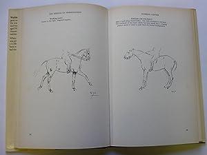The Essence of Horsemanship: Seunig Waldemar