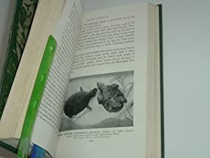 AMERICAN WILD LIFE ILLUSTRATED 1940 NEW YORK: THE WRITERS' PROGRAM