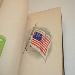 AMERICA THE LAND WE LOVE 1916: FRANCIS TRAVELYAN MILLER, LL.D., LITT. D.