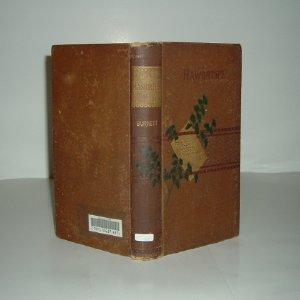 HAWORTH'S By FRANCES HODGSON BURNETT 1879 RARE First Edition: FRANCES HODGSON BURNETT