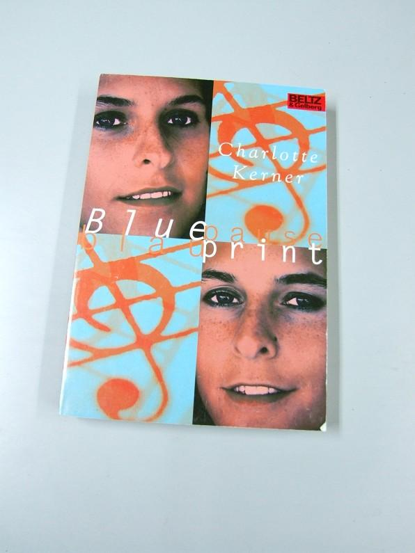 Blaupause zvab blueprint roman blaupause mit einem kerner charlotte malvernweather Choice Image