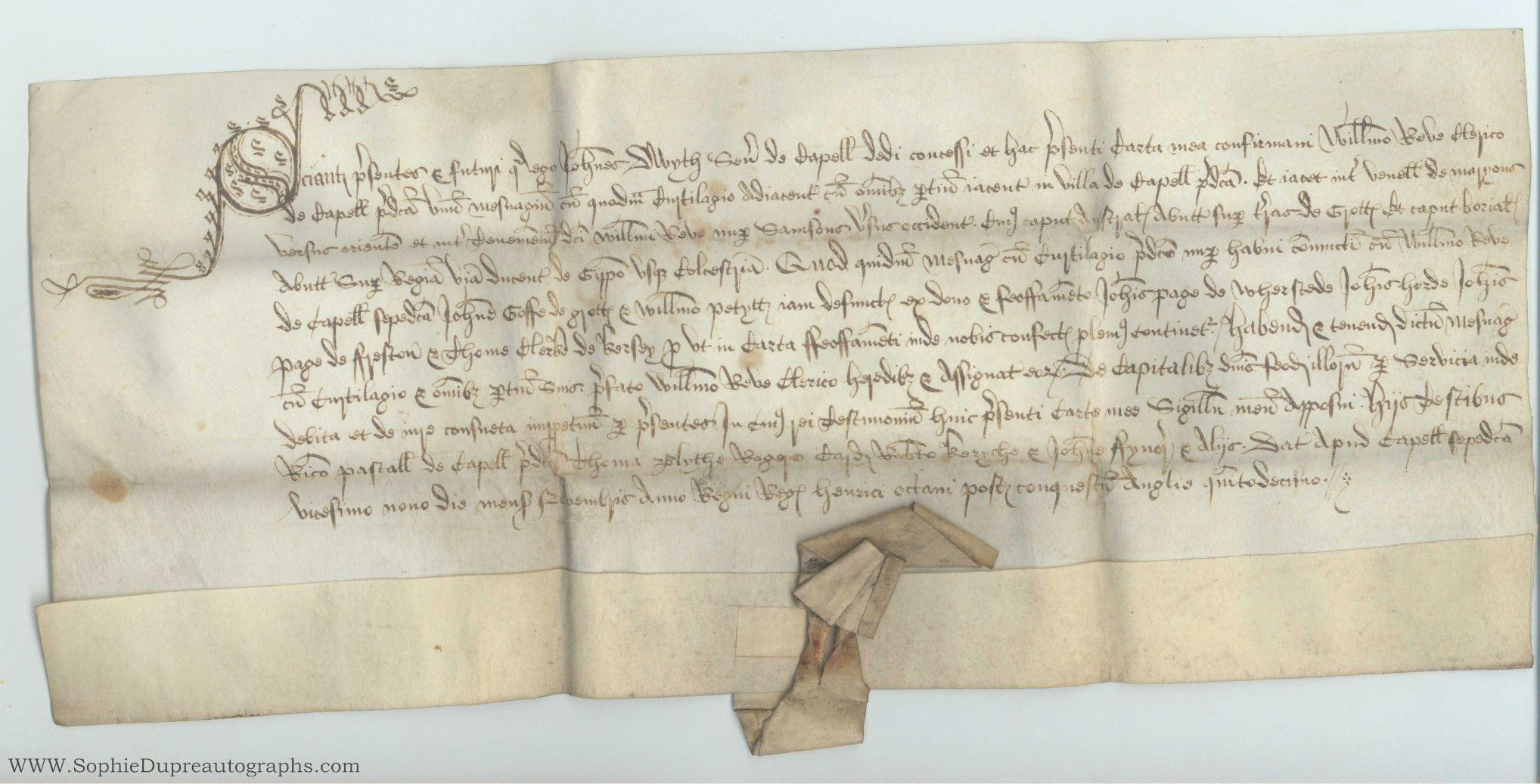 Confirmation of grant in perpetuity to William Reve, clerk, of Capel, (John, senior, of Capel St. Mary, Suffolk) DWYTH in Latin with translation, of  a dwelling in Capel, bounded by Maryons Lane on the east . the tenement of the said William Reve formerly Samsons on th