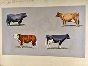 Collection of 11 original artworks for Macdonald First Library series 'Farms and Farming' gouache...