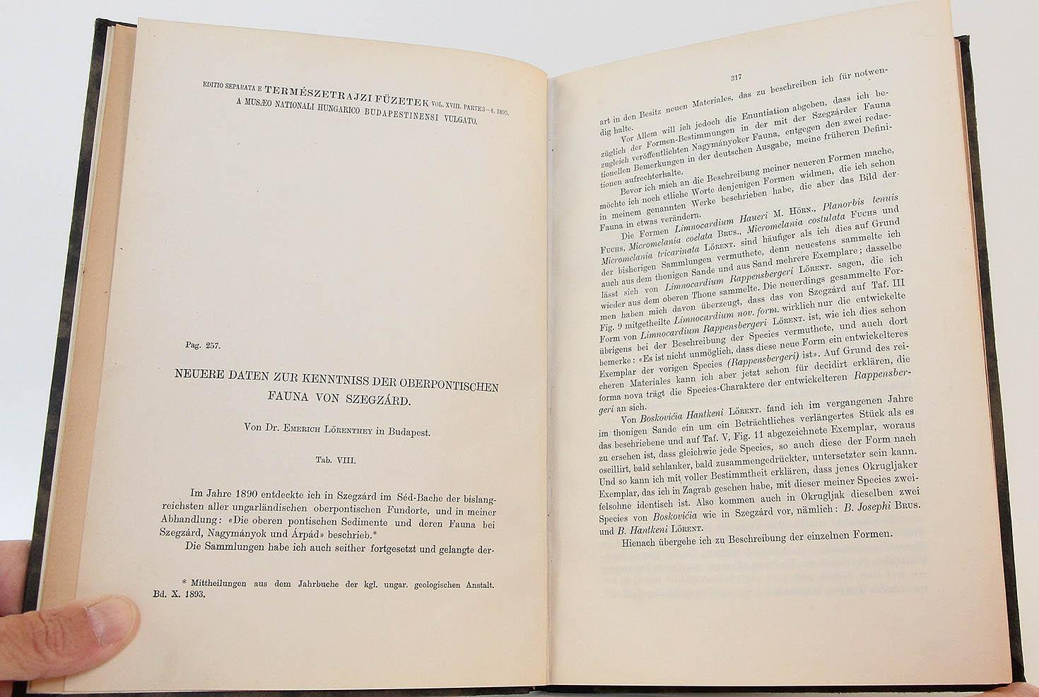 Five Offprints on the Paleontology of Hungary (1895-1903): Neuere ...