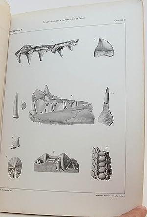O Cretaceo da Parahyba do Norte [The Cretaceous of Northern Paraiba, Brazil - 35 Plates With ...