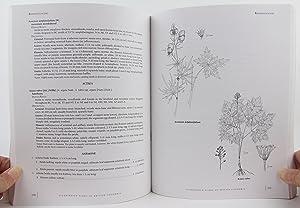 Illustrated Flora of British Columbia : Volume 4 - Dicotyledons (Orobanchaceae Through Rubiaceae): ...