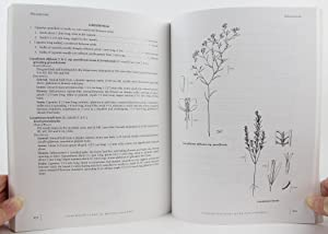 Illustrated Flora of British Columbia: Volume 3 - Dicotyledons (Diapensiaceae Through Onagraceae): ...