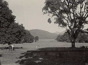 Javanese Landscape.: WEISSENBORN, Thily.