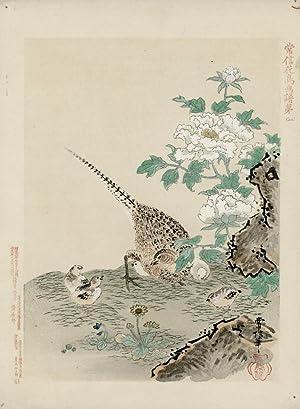 Green pheasant: TSUNENOBU, Kano.