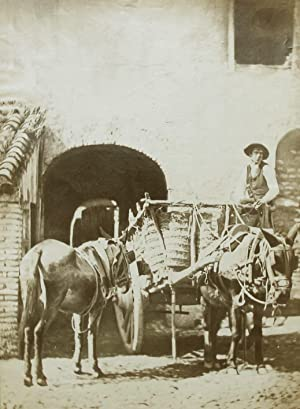 Donkeys and cart.: LAURENT, Jean.