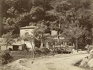 Buisseau des Singes.: ALGERIA.
