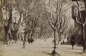 Oran, street view.: ND.PHOT.