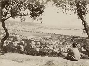 Panorama. Trees and boy in front.: ALGER.