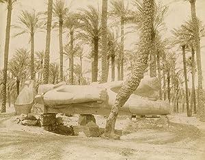 Statue de Memphis à Sahkara.: ZANGAKI (C. &