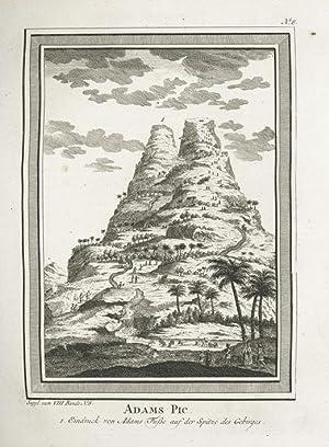 Adams Pic. (Ceylon).: SCHLEY, J. v. d.