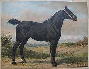 Het Iersche Paard.: EERELMAN, OTTO.