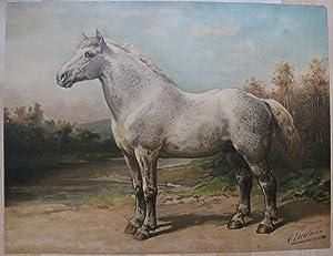 Het Boulonneesche Paard.: EERELMAN, OTTO.