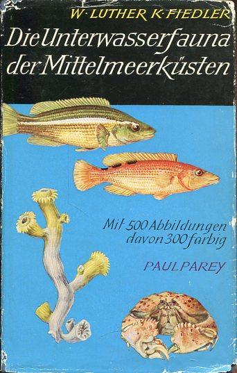 Die Unterwasserfaune der Mittelmeerküsten.: Luther, W. /