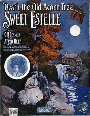 Sweet Estelle ('Neath the Old Acorn Tree): Helf, J. Fred