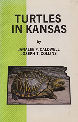 Turtles in Kansas