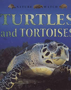 Turtles and Tortoises Nature Watch