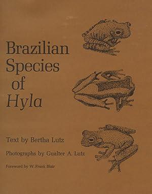 Brazilian Species of Hyla.: Lutz, Bertha