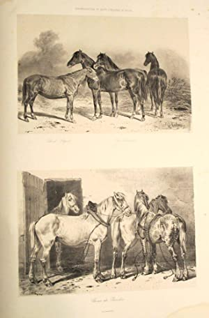 Admistration des Haras. Atlas Statistique de la Production des Chevaux en France; documents pour ...