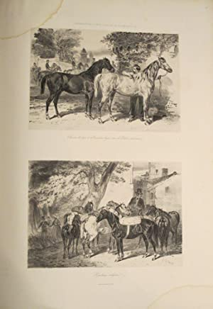 Administration des Haras. Atlas Statistique de la Production des Chevaux en France; documents pour ...