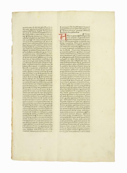 "Einzelblatt aus ""Pantheologia, sive Summa universae theologiae"": Inkunabelblatt - Rainerius"